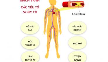 Các yếu tố nguy cơ của bệnh động mạch vành